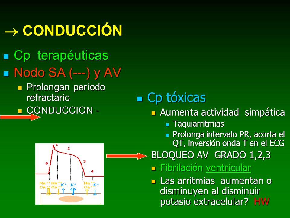 CONDUCCIÓN Cp terapéuticas Cp terapéuticas Nodo SA (---) y AV Nodo SA (---) y AV Prolongan período refractario Prolongan período refractario CONDUCCIO