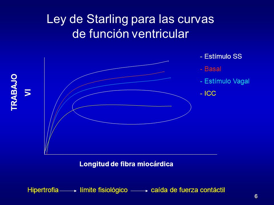 6 Longitud de fibra miocárdica Ley de Starling para las curvas de función ventricular Hipertrofia límite fisiológico caída de fuerza contáctil TRABAJO