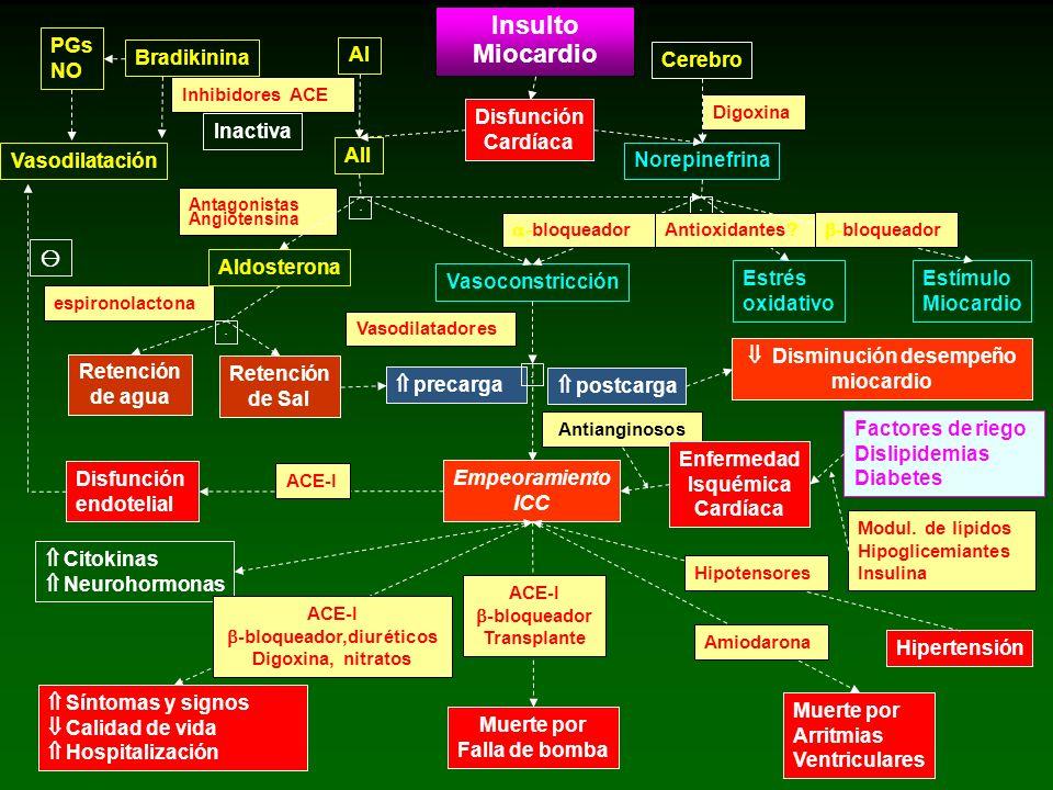 Modul. de lípidos Hipoglicemiantes Insulina espironolactona PGs NO Bradikinina AI AII Insulto Miocardio Cerebro Disfunción Cardíaca Norepinefrina Inac