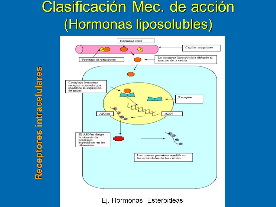 Clasificación Mec. de acción (Hormonas liposolubles) Ej. Hormonas Esteroideas Receptores intracelulares