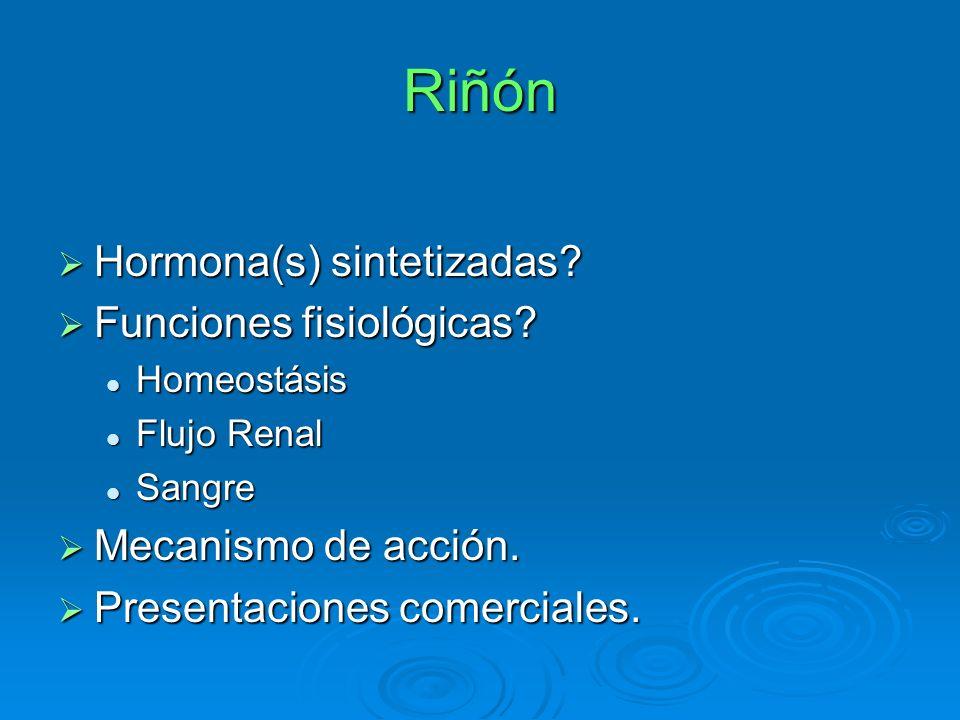 Riñón Hormona(s) sintetizadas? Hormona(s) sintetizadas? Funciones fisiológicas? Funciones fisiológicas? Homeostásis Homeostásis Flujo Renal Flujo Rena