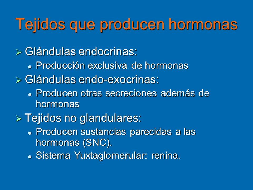 Tejidos que producen hormonas Glándulas endocrinas: Glándulas endocrinas: Producción exclusiva de hormonas Producción exclusiva de hormonas Glándulas