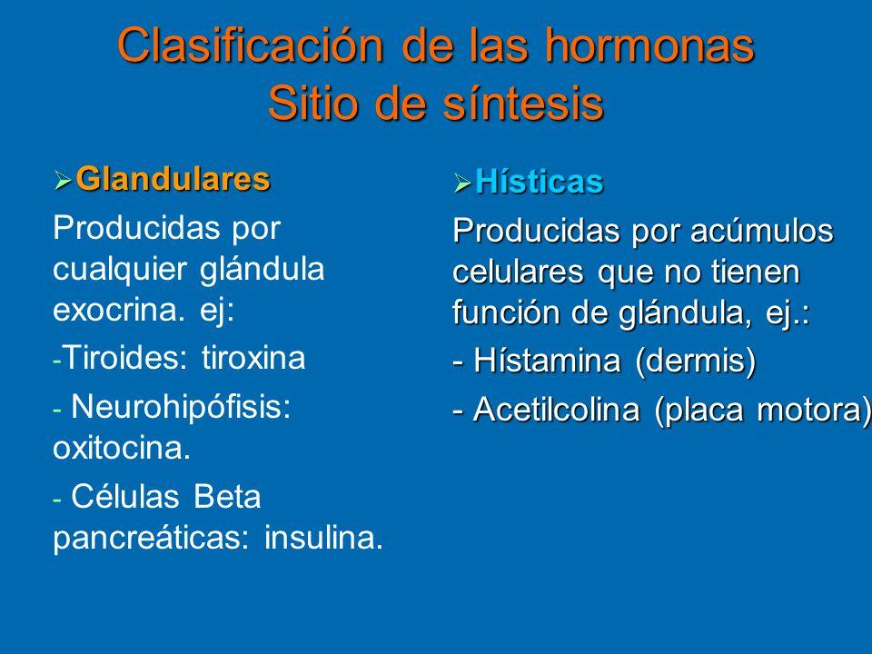 Clasificación de las hormonas Sitio de síntesis Glandulares Glandulares Producidas por cualquier glándula exocrina. ej: - - Tiroides: tiroxina - - Neu