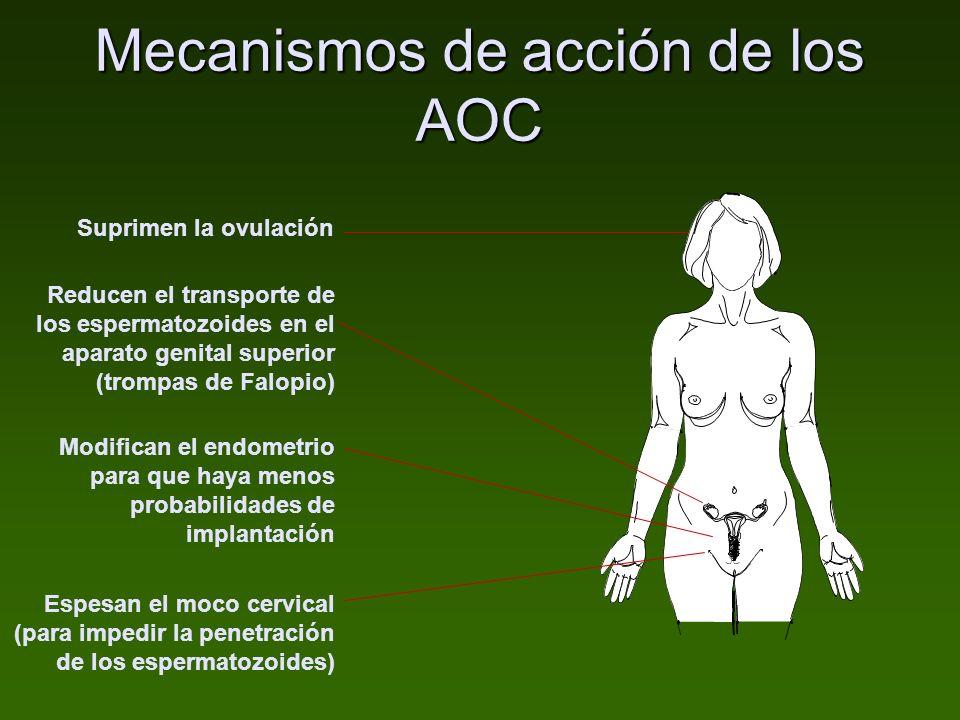 Mecanismos de acción de los AOC Suprimen la ovulación Modifican el endometrio para que haya menos probabilidades de implantación Espesan el moco cervi