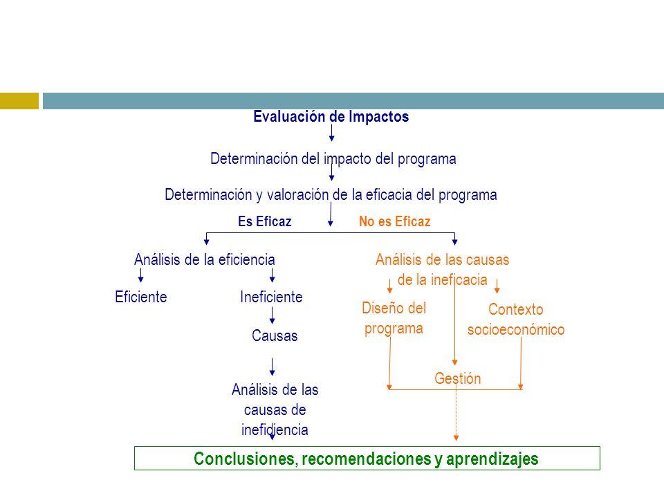 Análisis de la eficiencia Gestión Análisis de las causas de ineficiencia Causas Conclusiones, recomendaciones y aprendizajes Evaluación de Impactos Determinación y valoración de la eficacia del programa Determinación del impacto del programa Es EficazNo es Eficaz Análisis de las causas de la ineficacia Contexto socioeconómico Diseño del programa IneficienteEficiente