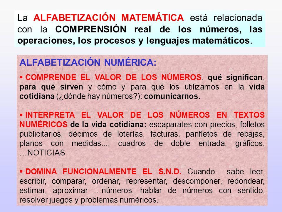 5 La ALFABETIZACIÓN MATEMÁTICA está relacionada con la COMPRENSIÓN real de los números, las operaciones, los procesos y lenguajes matemáticos. ALFABET