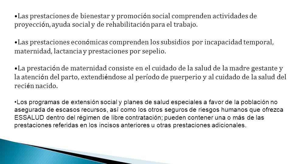 Las prestaciones de bienestar y promoci ó n social comprenden actividades de proyecci ó n, ayuda social y de rehabilitaci ó n para el trabajo. Las pre
