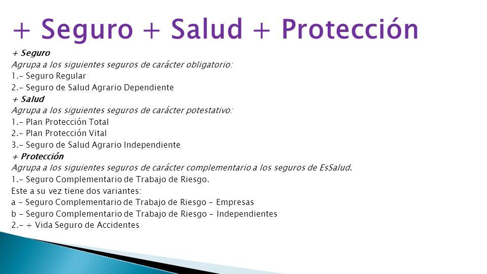 + Seguro + Salud + Protección + Seguro Agrupa a los siguientes seguros de carácter obligatorio: 1.- Seguro Regular 2.- Seguro de Salud Agrario Dependi