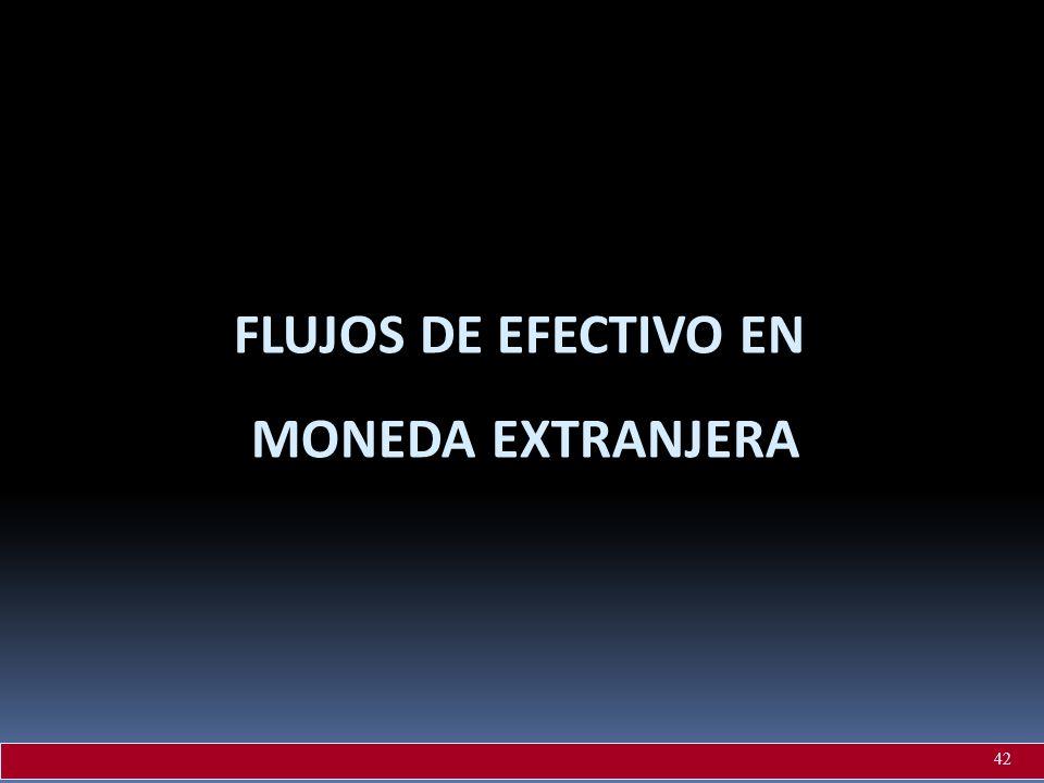 FLUJOS DE EFECTIVO EN MONEDA EXTRANJERA 42