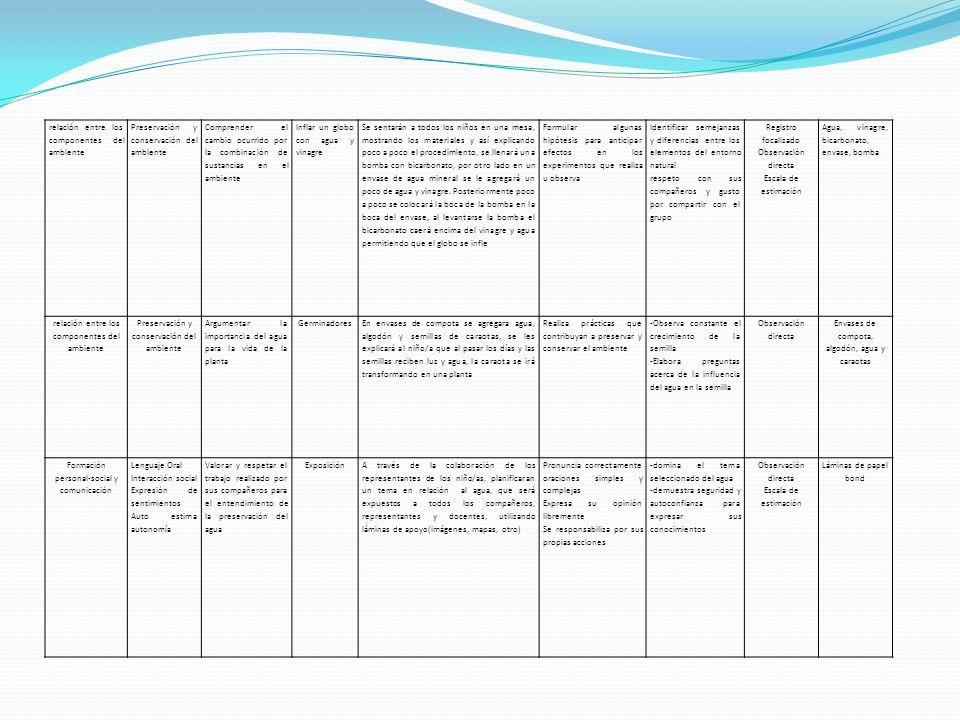relación entre los componentes del ambiente Preservación y conservación del ambiente Comprender el cambio ocurrido por la combinación de sustancias en