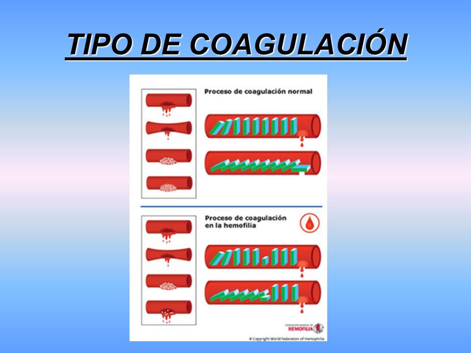 TIPO DE COAGULACIÓN