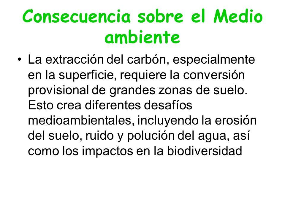 Consecuencia sobre el Medio ambiente La extracción del carbón, especialmente en la superficie, requiere la conversión provisional de grandes zonas de