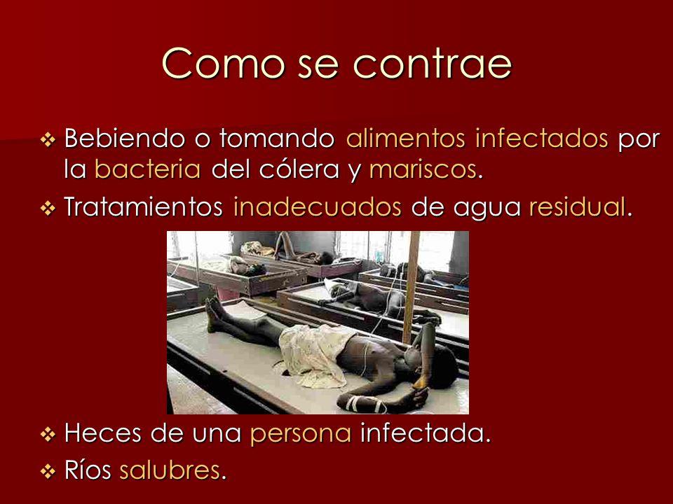 Como se contrae Bebiendo o tomando alimentos infectados por la bacteria del cólera y mariscos. Bebiendo o tomando alimentos infectados por la bacteria