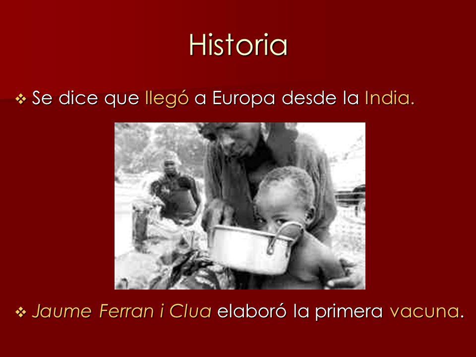Historia Se dice que llegó a Europa desde la India. Se dice que llegó a Europa desde la India. Jaume Ferran i Clua elaboró la primera vacuna. Jaume Fe