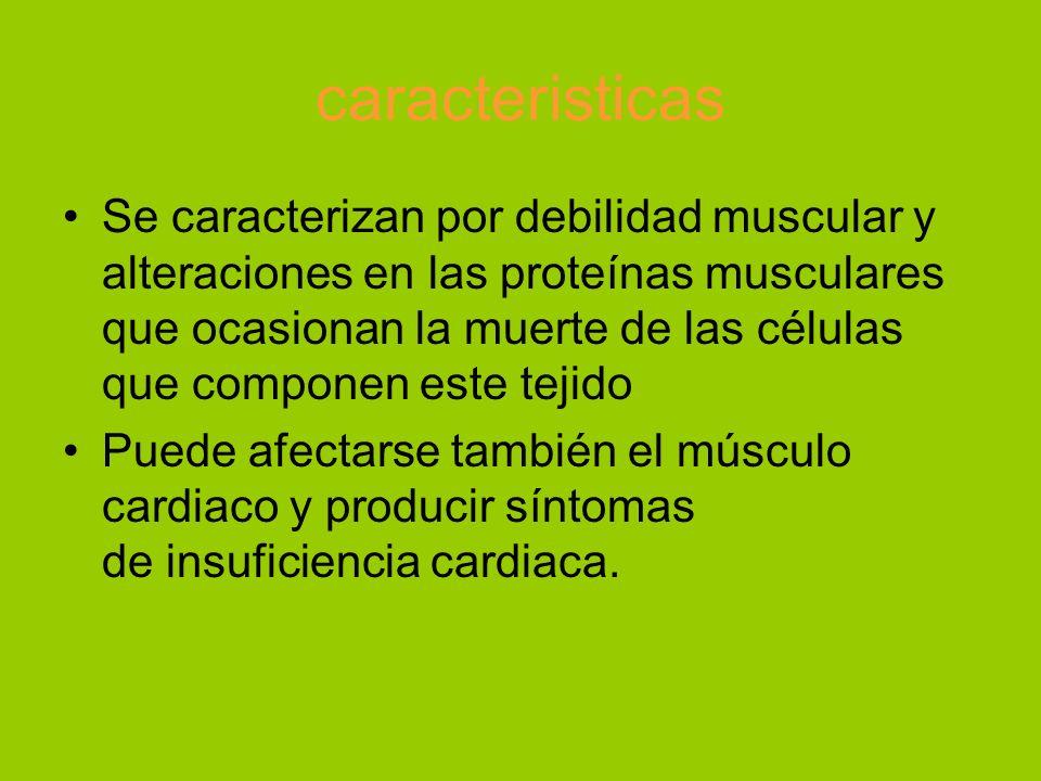 caracteristicas Se caracterizan por debilidad muscular y alteraciones en las proteínas musculares que ocasionan la muerte de las células que componen