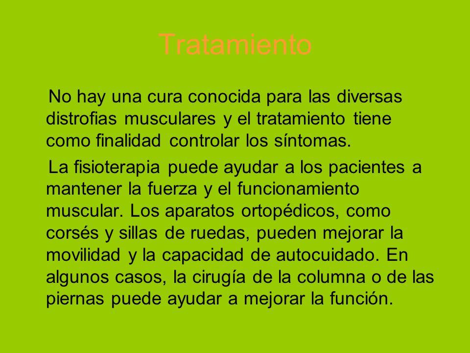 Tratamiento No hay una cura conocida para las diversas distrofias musculares y el tratamiento tiene como finalidad controlar los síntomas. La fisioter
