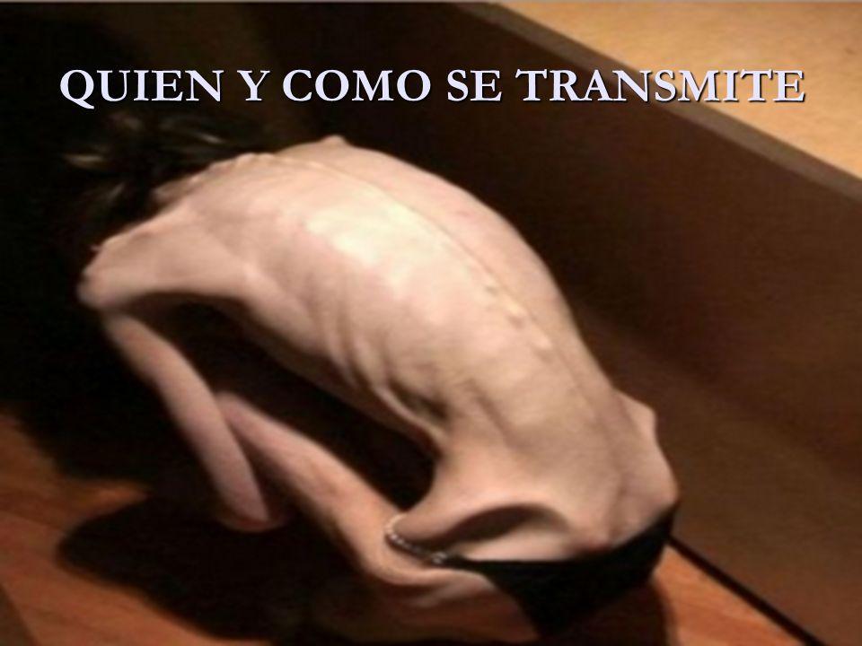 QUIEN Y COMO SE TRANSMITE