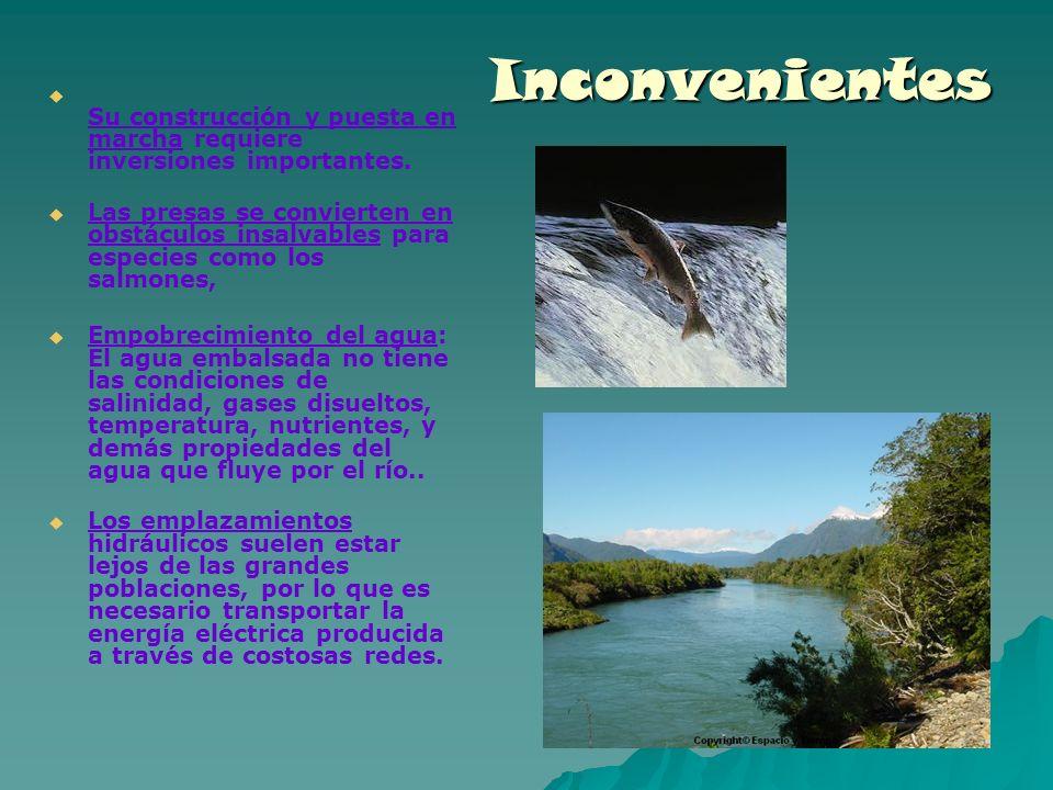 Inconvenientes Su construcción y puesta en marcha requiere inversiones importantes. Las presas se convierten en obstáculos insalvables para especies c