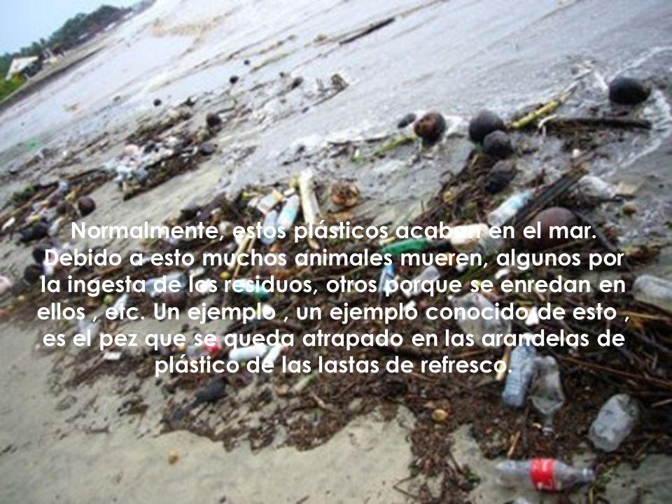 Normalmente, estos plásticos acaban en el mar. Debido a esto muchos animales mueren, algunos por la ingesta de los residuos, otros porque se enredan e