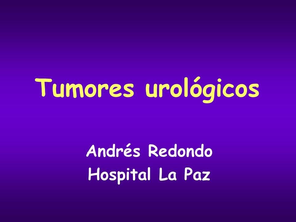 Cáncer de próstata Enfermedad diseminada Tratamiento paliativo Tratamiento de la obstrucción urinaria: sonda vesical, resección transuretral, radioterapia Tratamiento de la hematuria: fulguración cistoscópica, radioterapia Tratamiento de las metástasis óseas: Bifosfonatos: zoledronato (Zometa ® ), disminuye el dolor y la incidencia de eventos óseos Radioterapia: mejora el dolor óseo localizado Radio-fármacos: samario-153: mejora el dolor óseo múltiple Cirugía: fracturas Fármacos analgésicos