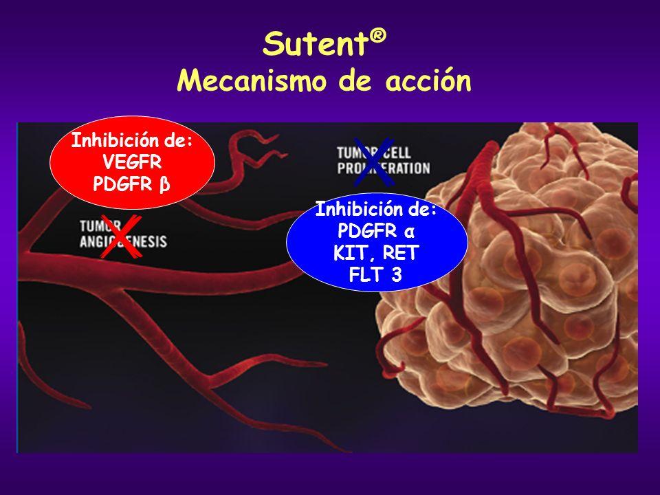 Sutent ® Mecanismo de acción Inhibición de: VEGFR PDGFR β Inhibición de: PDGFR α KIT, RET FLT 3