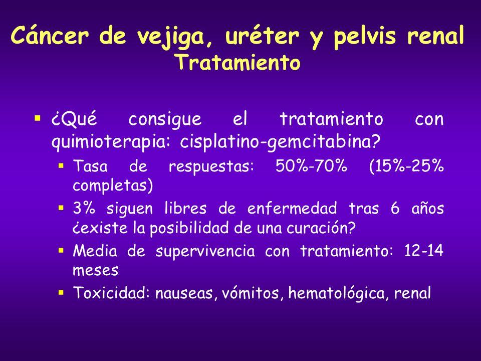 Cáncer de vejiga, uréter y pelvis renal Tratamiento ¿Qué consigue el tratamiento con quimioterapia: cisplatino-gemcitabina? Tasa de respuestas: 50%-70