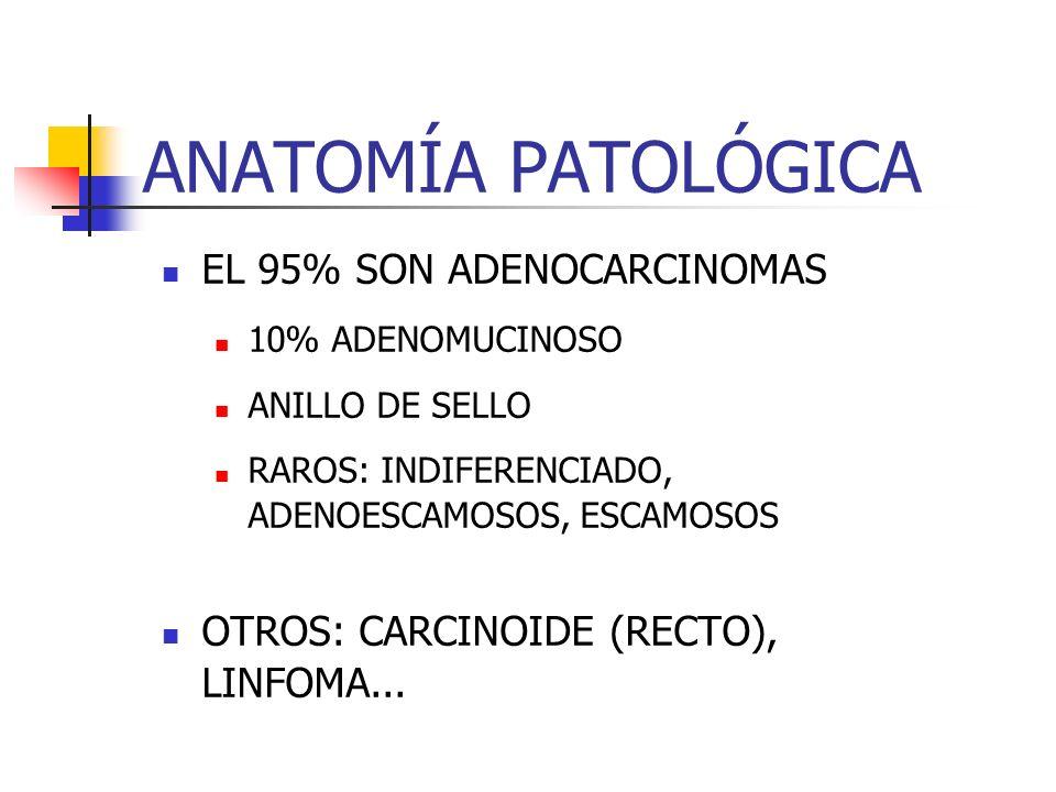 ANATOMÍA PATOLÓGICA EL 95% SON ADENOCARCINOMAS 10% ADENOMUCINOSO ANILLO DE SELLO RAROS: INDIFERENCIADO, ADENOESCAMOSOS, ESCAMOSOS OTROS: CARCINOIDE (R