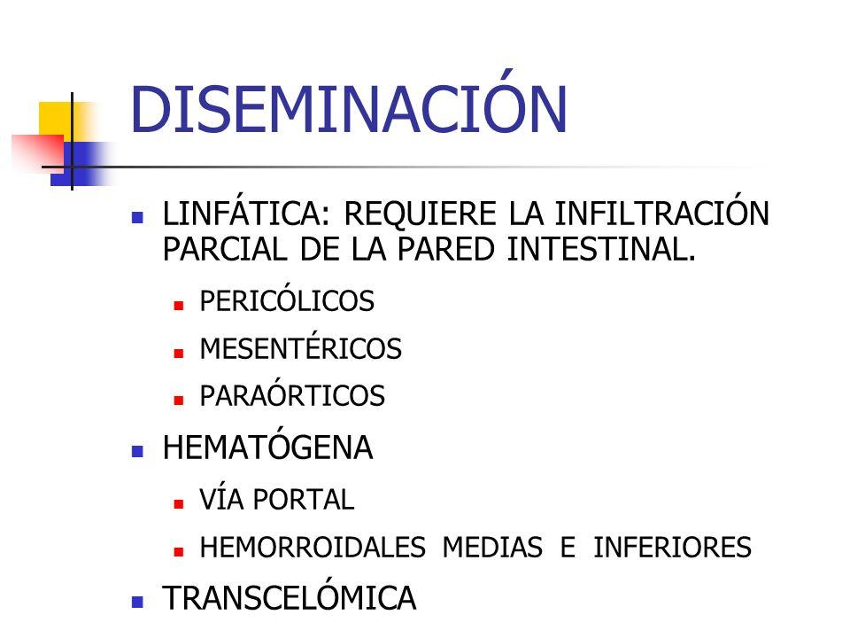 DISEMINACIÓN LINFÁTICA: REQUIERE LA INFILTRACIÓN PARCIAL DE LA PARED INTESTINAL. PERICÓLICOS MESENTÉRICOS PARAÓRTICOS HEMATÓGENA VÍA PORTAL HEMORROIDA