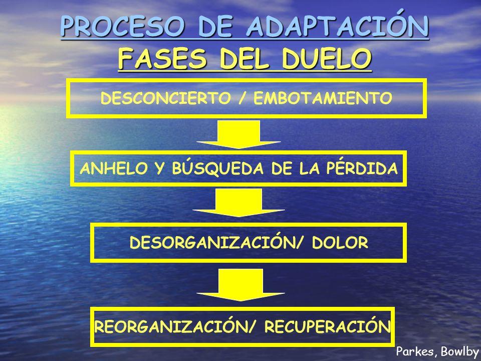 PROCESO DE ADAPTACIÓN FASES DEL DUELO DESCONCIERTO / EMBOTAMIENTO ANHELO Y BÚSQUEDA DE LA PÉRDIDA DESORGANIZACIÓN/ DOLOR REORGANIZACIÓN/ RECUPERACIÓN