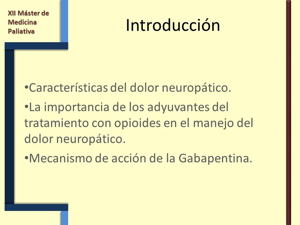 XII Máster de Medicina Paliativa Introducción Características del dolor neuropático. La importancia de los adyuvantes del tratamiento con opioides en