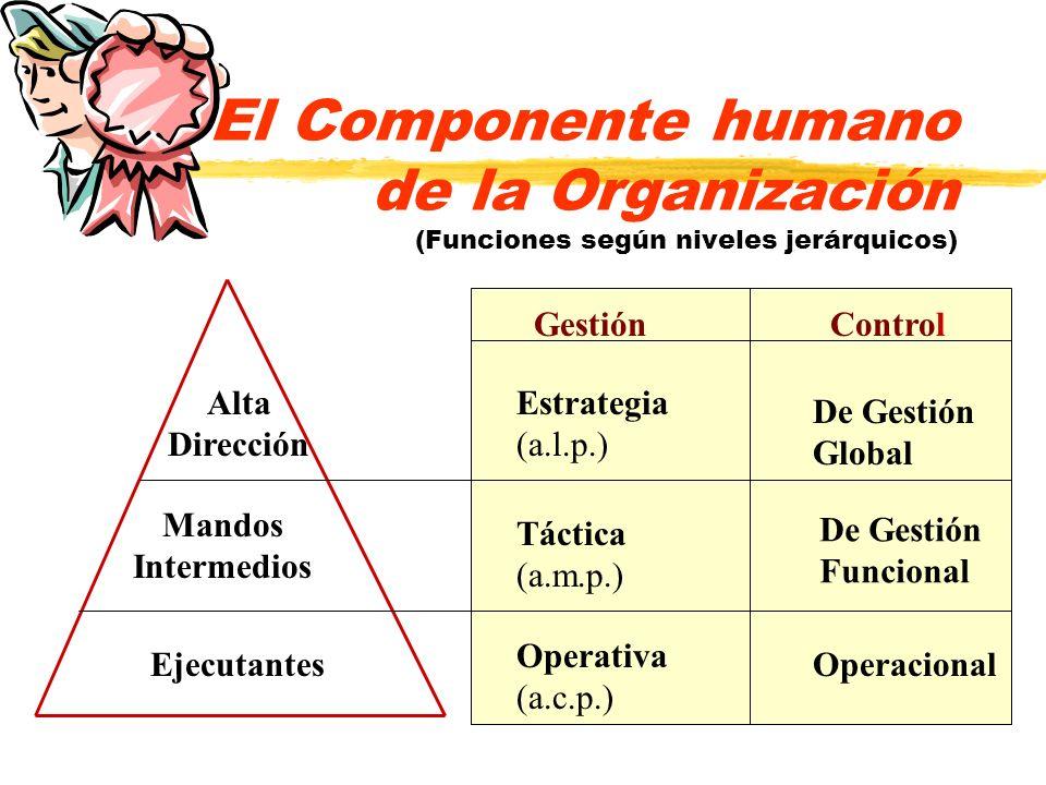 El Componente humano de la Organización (Funciones según niveles jerárquicos) GestiónControl Estrategia (a.l.p.) De Gestión Global Táctica (a.m.p.) De
