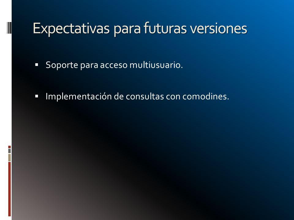 Expectativas para futuras versiones Soporte para acceso multiusuario. Implementación de consultas con comodines.