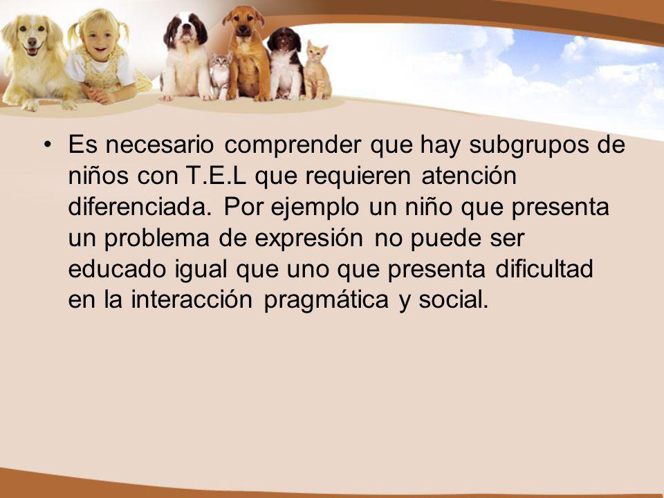 Es necesario comprender que hay subgrupos de niños con T.E.L que requieren atención diferenciada.