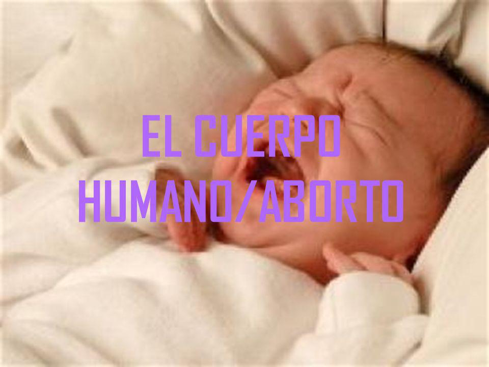 EL CUERPO HUMANO/ABORTO