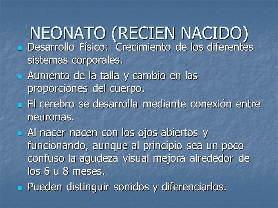 NEONATO (RECIEN NACIDO) Desarrollo Físico: Crecimiento de los diferentes sistemas corporales. Desarrollo Físico: Crecimiento de los diferentes sistema