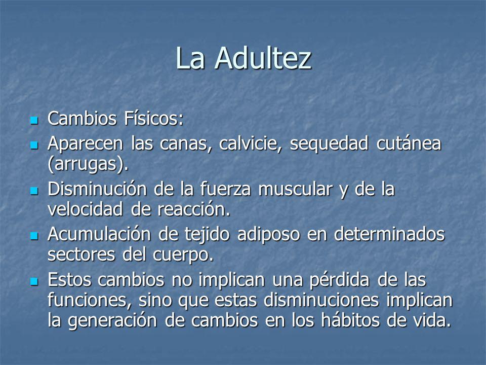 La Adultez Cambios Físicos: Cambios Físicos: Aparecen las canas, calvicie, sequedad cutánea (arrugas). Aparecen las canas, calvicie, sequedad cutánea