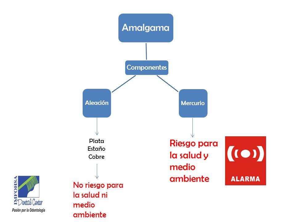 Protección del Personal El Paciente Aspirador de alta potencia, si es posible usar dique de goma.