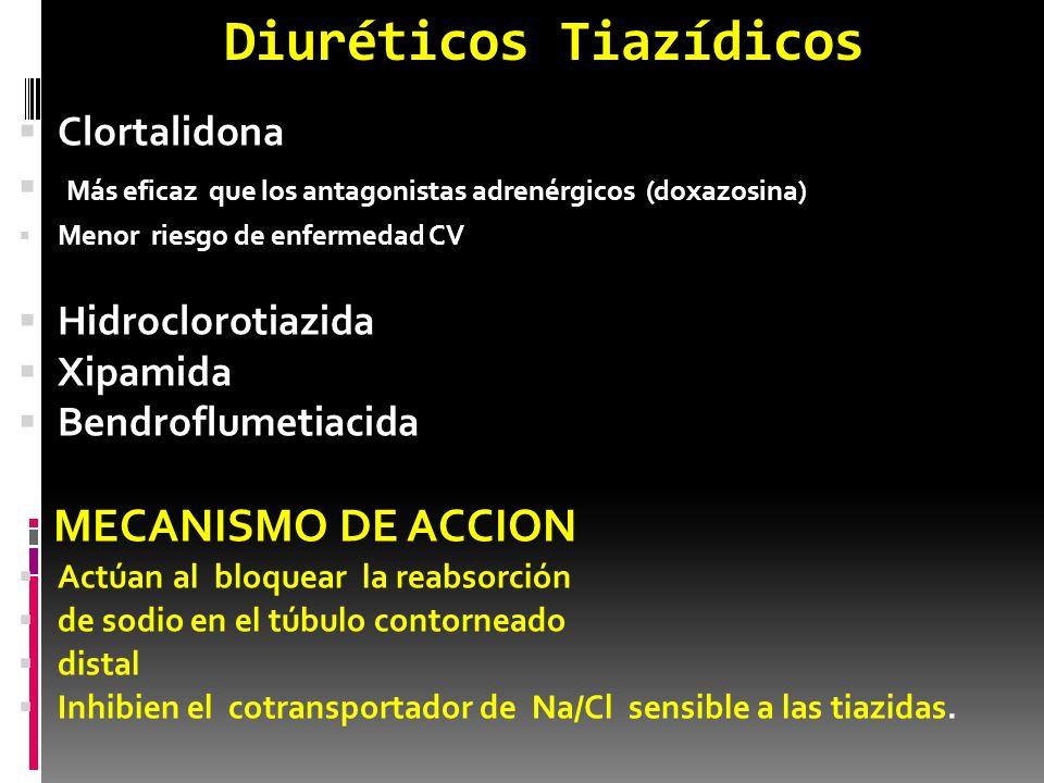 Diuréticos Tiazídicos Clortalidona Más eficaz que los antagonistas adrenérgicos (doxazosina) Menor riesgo de enfermedad CV Hidroclorotiazida Xipamida