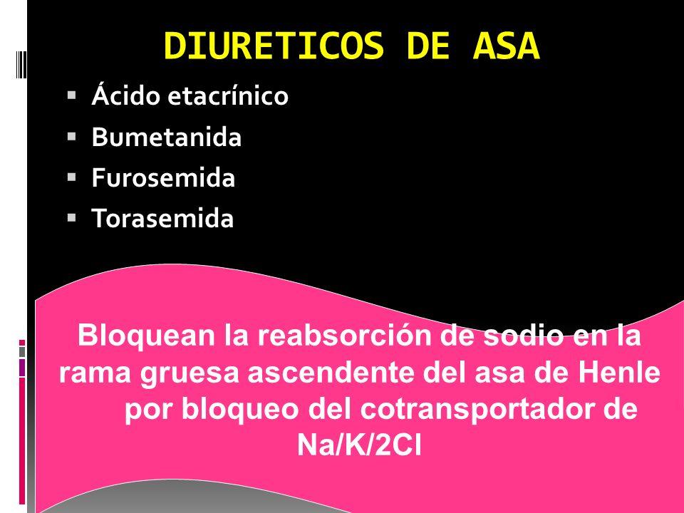 DIURETICOS DE ASA Ácido etacrínico Bumetanida Furosemida Torasemida Bloquean la reabsorción de sodio en la rama gruesa ascendente del asa de Henle por