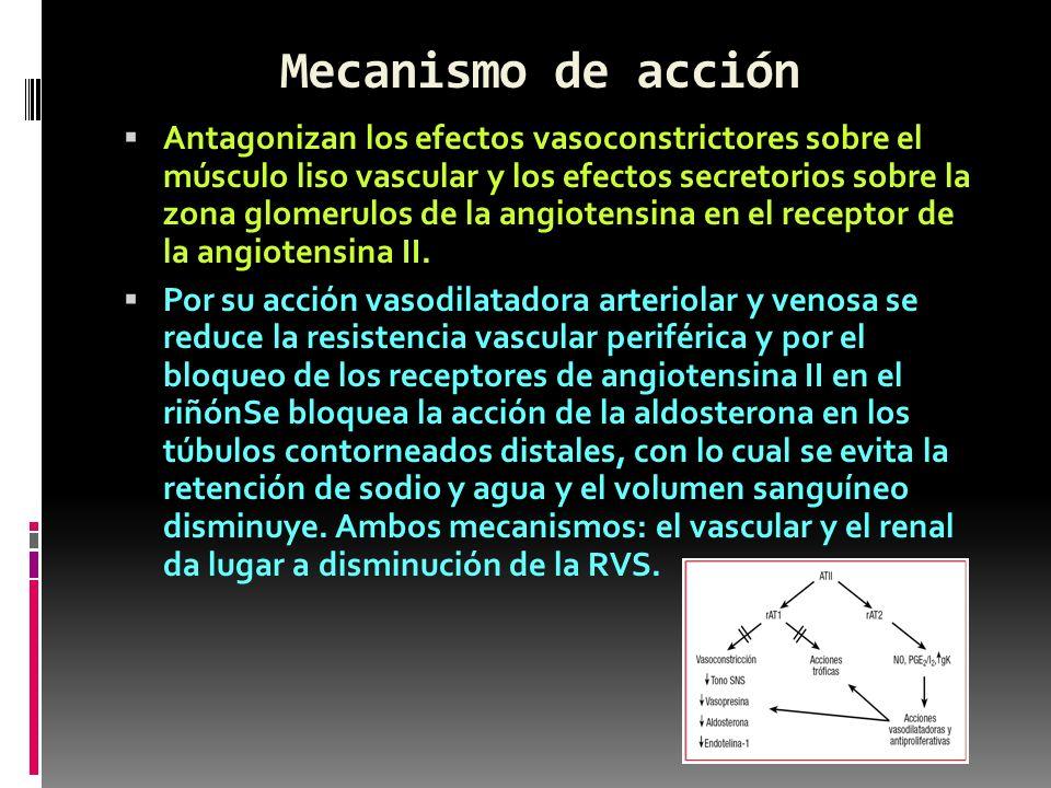 Mecanismo de acción Antagonizan los efectos vasoconstrictores sobre el músculo liso vascular y los efectos secretorios sobre la zona glomerulos de la