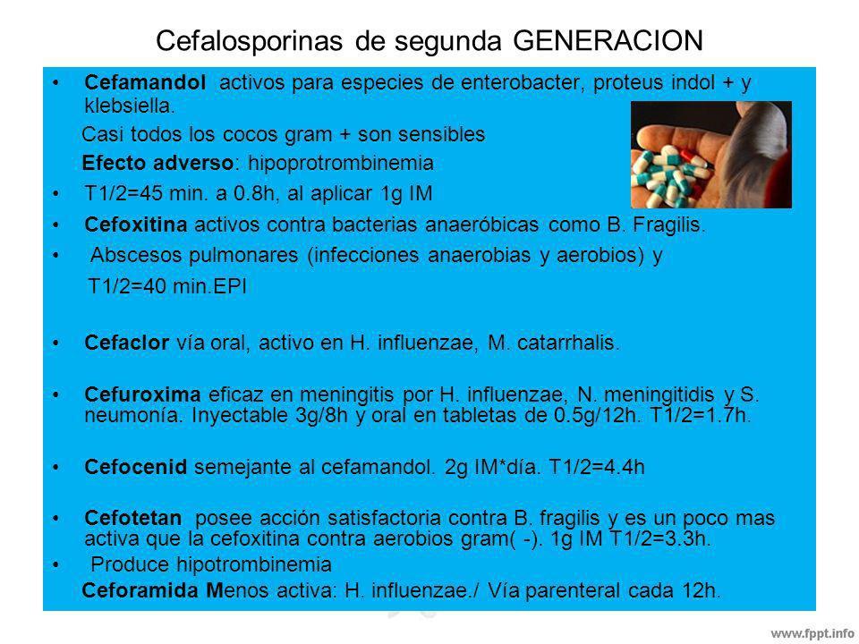 Cefalosporinas de segunda GENERACION Cefamandol activos para especies de enterobacter, proteus indol + y klebsiella. Casi todos los cocos gram + son s