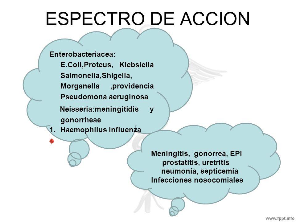 ESPECTRO DE ACCION Enterobacteriacea: E.Coli,Proteus, Klebsiella Salmonella,Shigella, Morganella,providencia Pseudomona aeruginosa Neisseria:meningiti