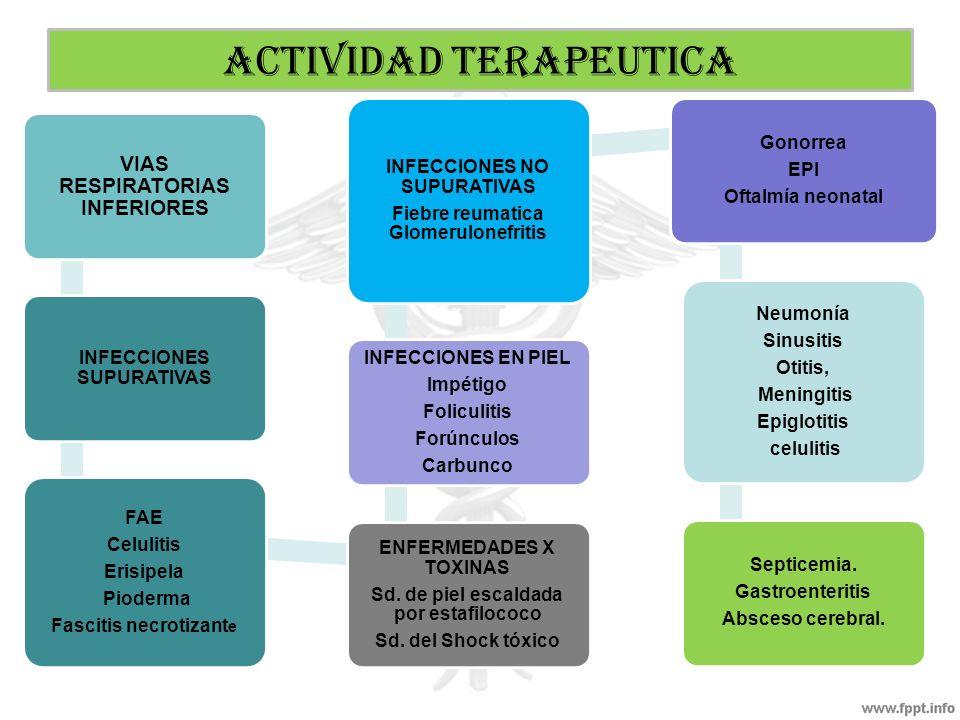 VIAS RESPIRATORIAS INFERIORES INFECCIONES SUPURATIVAS FAE Celulitis Erisipela Pioderma Fascitis necrotizant e ENFERMEDADES X TOXINAS Sd. de piel escal