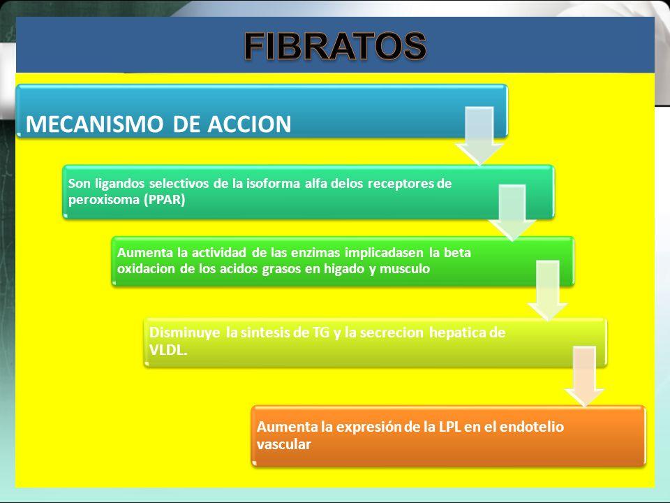 Los derivados del ácido fíbrico (o fibratos) se utilizan para reducir los niveles de triglicéridos. Descomponen las partículas de triglicéridos y las