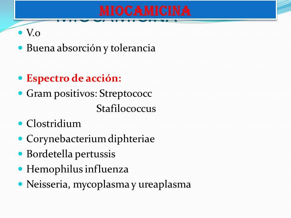 MIOCAMICINA V.o Buena absorción y tolerancia Espectro de acción: Gram positivos: Streptococc Stafilococcus Clostridium Corynebacterium diphteriae Bord