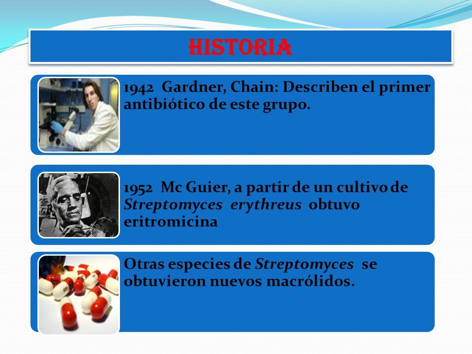 1942 Gardner, Chain: Describen el primer antibiótico de este grupo. 1952 Mc Guier, a partir de un cultivo de Streptomyces erythreus obtuvo eritromicin