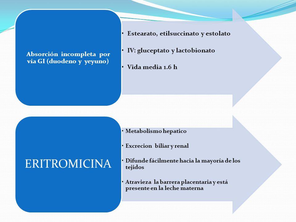 Estearato, etilsuccinato y estolato IV: gluceptato y lactobionato Vida media 1.6 h Absorción incompleta por vía GI (duodeno y yeyuno) Metabolismo hepa