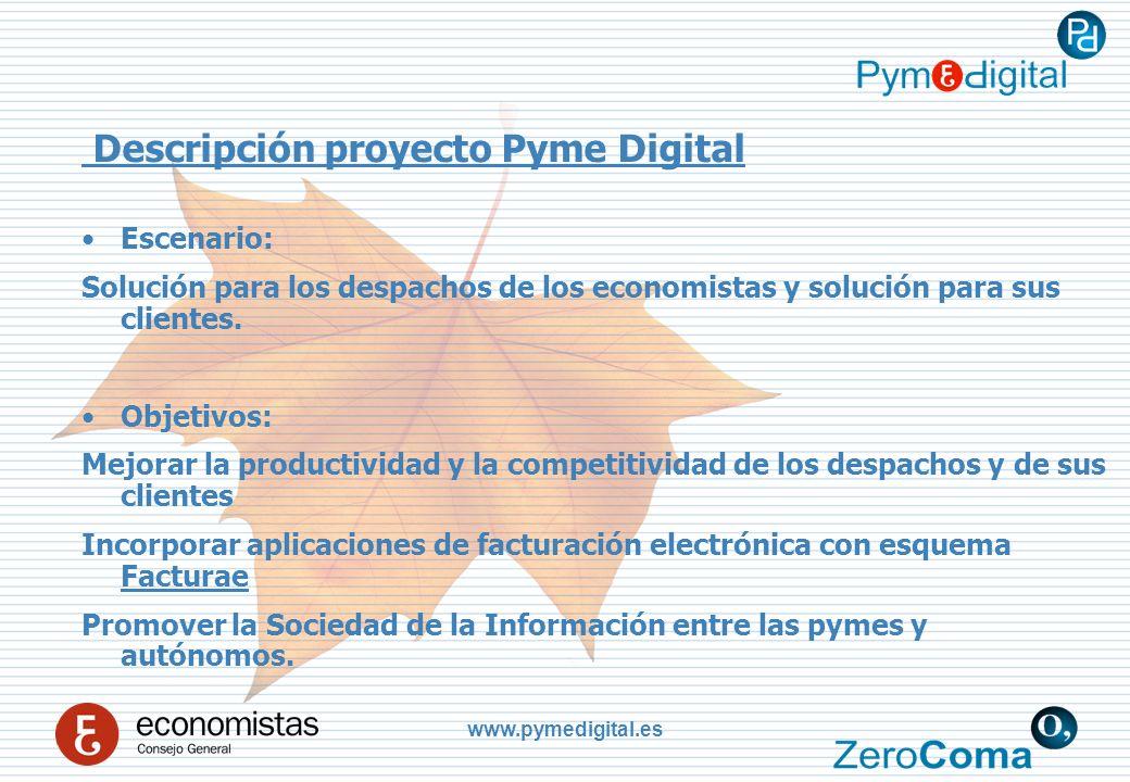 www.pymedigital.es Descripción proyecto Pyme Digital Escenario: Solución para los despachos de los economistas y solución para sus clientes.
