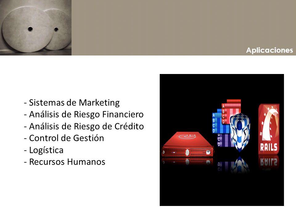 Aplicaciones - Sistemas de Marketing - Análisis de Riesgo Financiero - Análisis de Riesgo de Crédito - Control de Gestión - Logística - Recursos Human