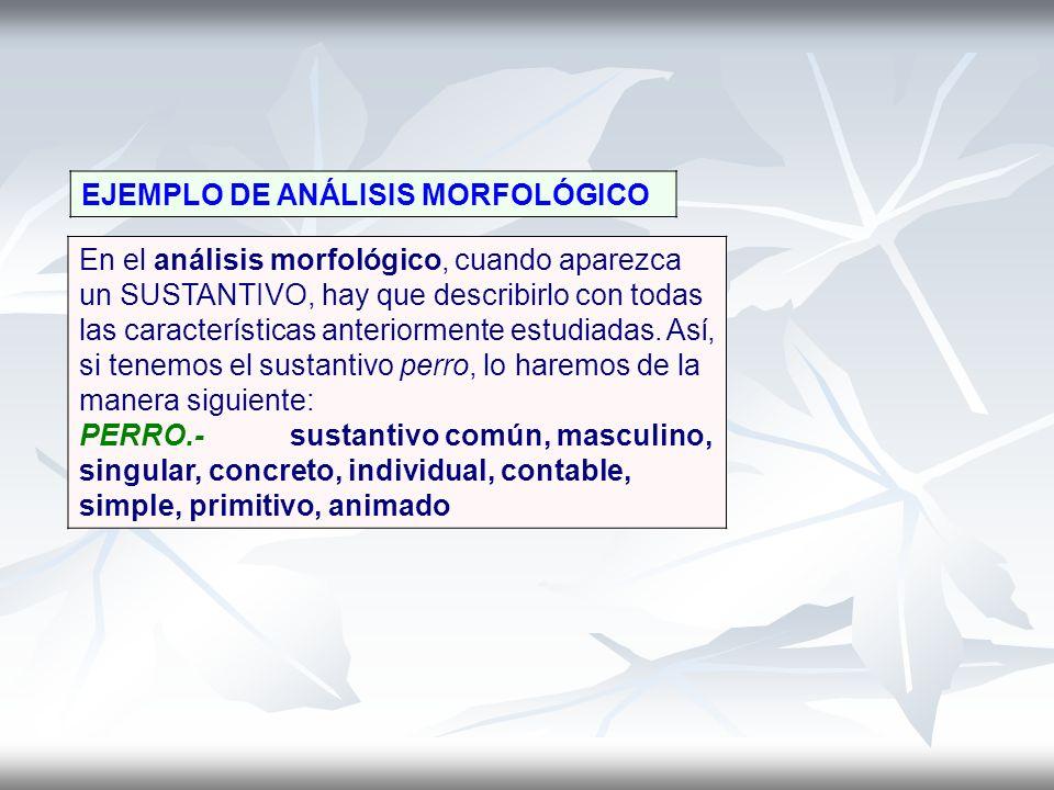 EJEMPLO DE ANÁLISIS MORFOLÓGICO En el análisis morfológico, cuando aparezca un SUSTANTIVO, hay que describirlo con todas las características anteriorm
